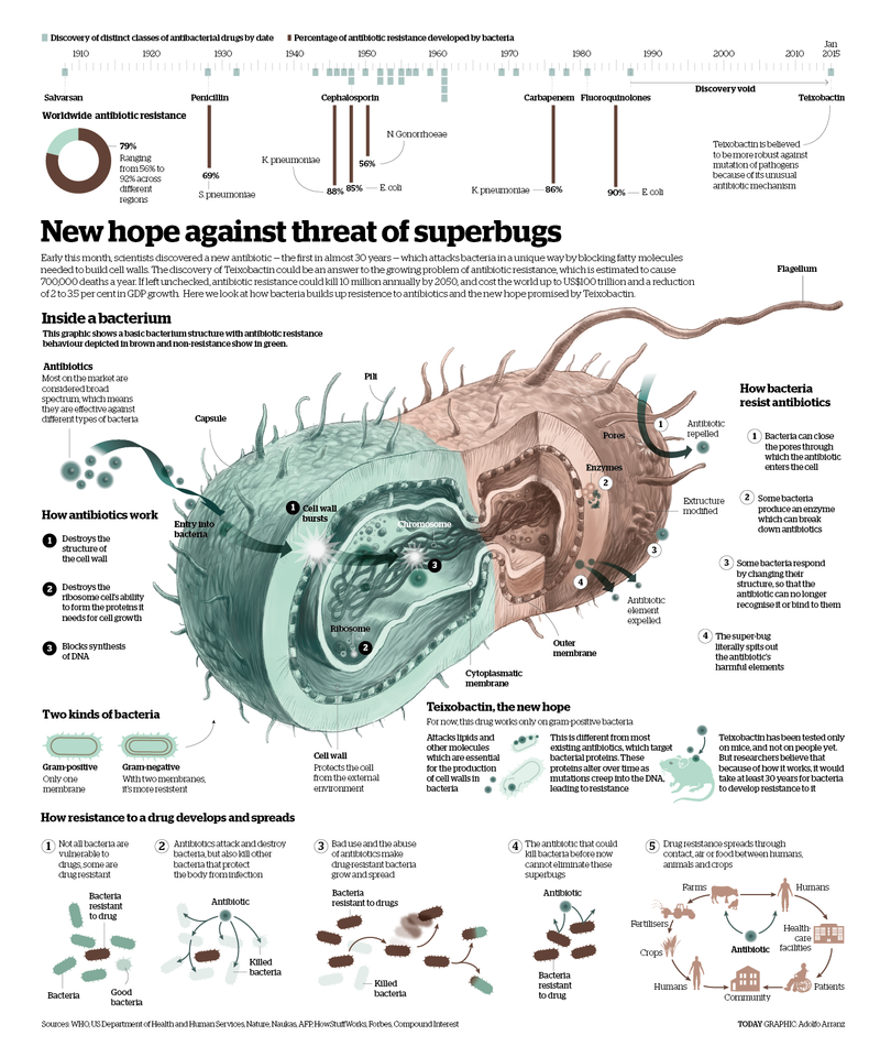 Antibiotics-infographic-V.02